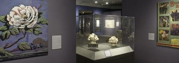 Exhibition hall with posters of flowers.