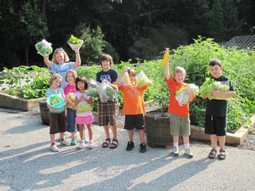 kids garden harvest