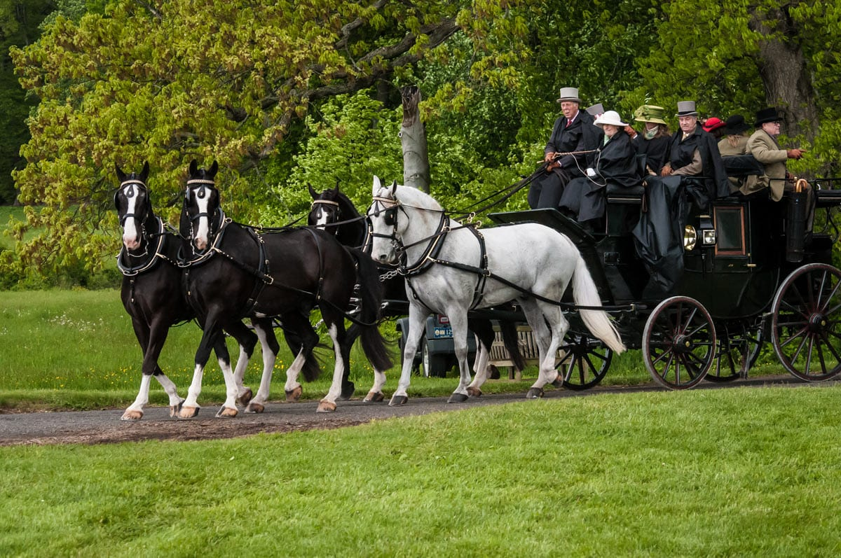 Horse drawn carriage parade at Winterthur Point-to-Point Steeplechase.