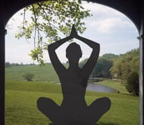 Image representing yoga at Winterthur.